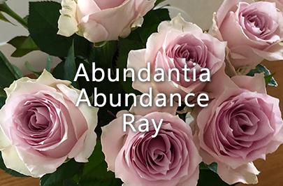 Abundantia Abundance Ray