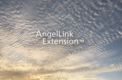 AngelLink &   Purification Rings