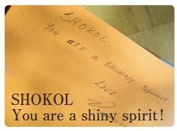 SHOKOL You are a shiny spirit!