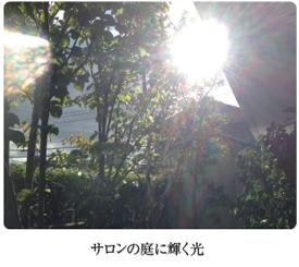 サロンの庭に虹色の光