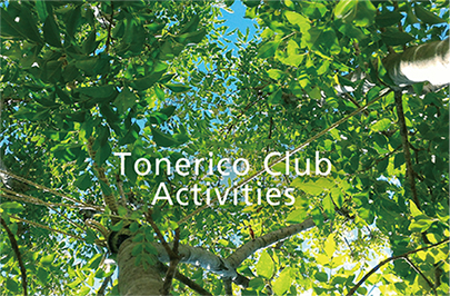 Tonerico Club